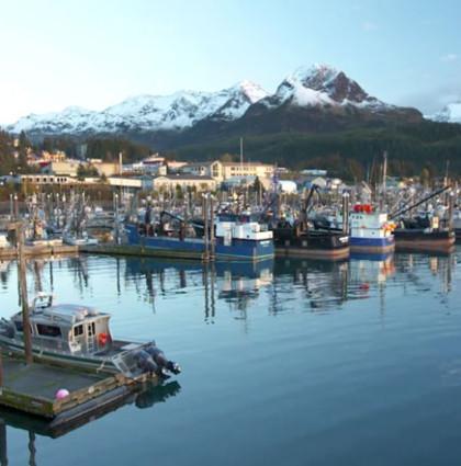 Cordova Alaska Stewardship Profile